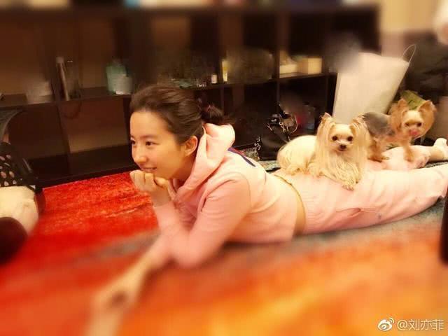 32岁刘亦菲生活居家照曝光,网友直呼太清纯,古装的刘亦菲更美-第2张图片